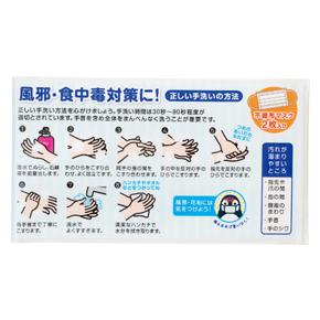 図解!正しい手洗い 不織布マスク(2枚入り)