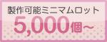 ミニマムロット5000