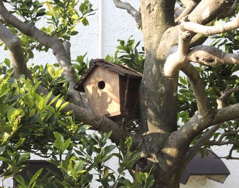 力匠部屋~「鳥小屋」